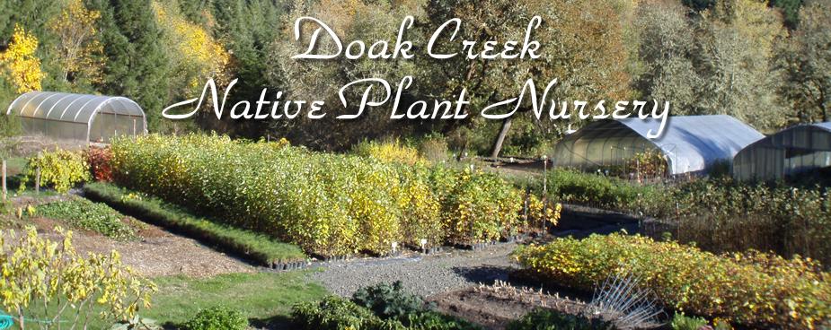 Doak Creek Native Plant Nursery