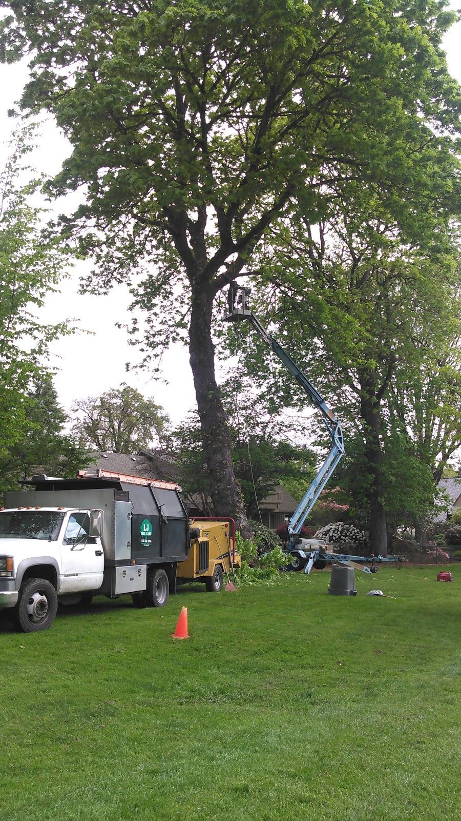 LJ Tree Care