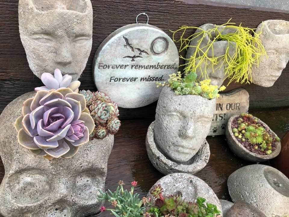 Plantasies ~House Plant Nursery