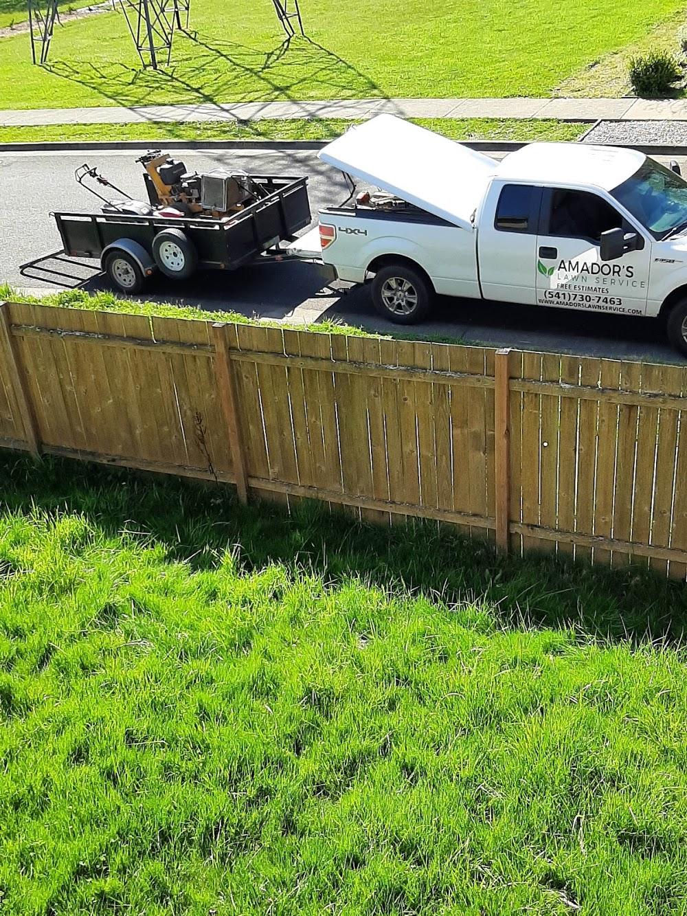 Amador's Lawn Service