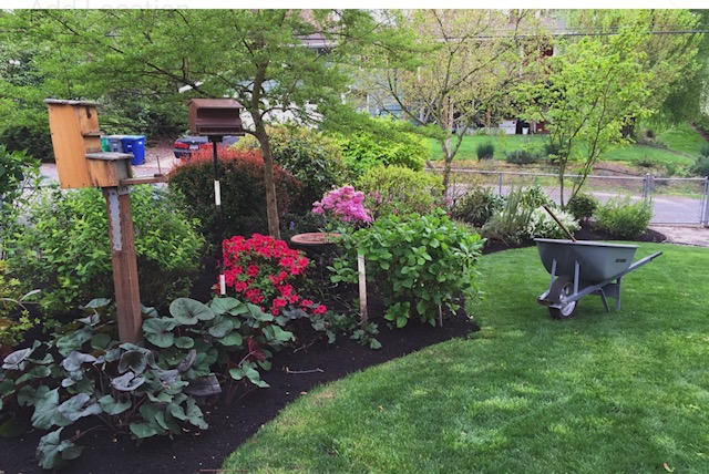Premium Gardens Landscaping Maintenance